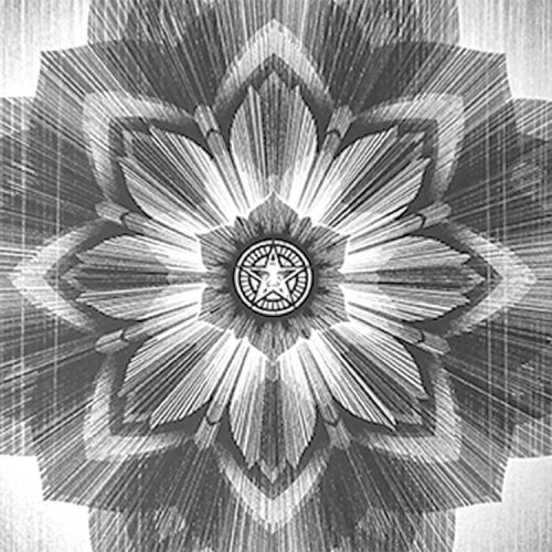 showing middle detail with obey star from shepard fairey and kai & sunny stardust print