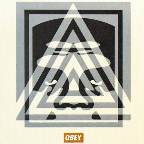 shepard fairey pyramid top icon showing middle detail with obey logo