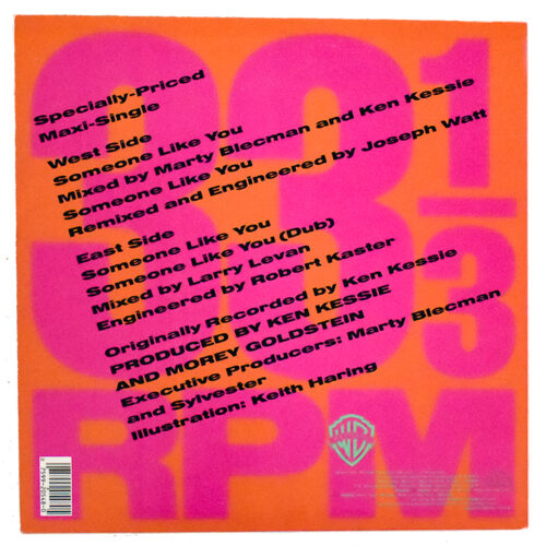 back cover of keith haring sylvester someone like you record